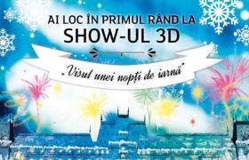 Proiecte 3D pe Palatul Culturii